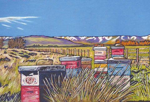 BeeHIves, Ida Valley, Central Otago