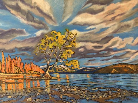 The Wanaka Tree, Wanaka
