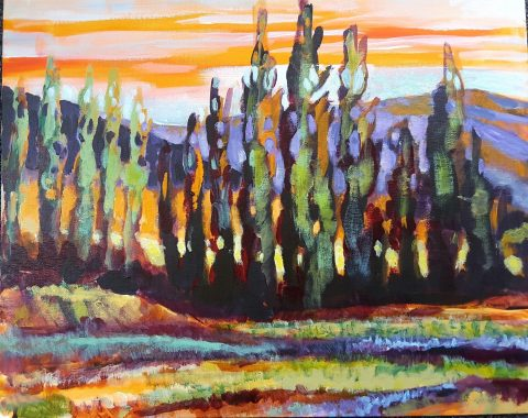 Autumn Poplars, Central otago