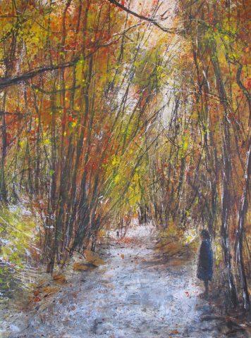 Arrowtown River walk