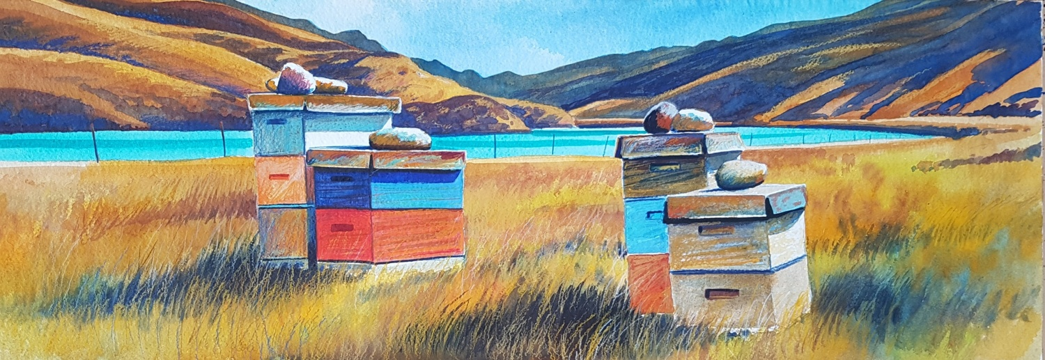 Beehives, Cromwell Gorge