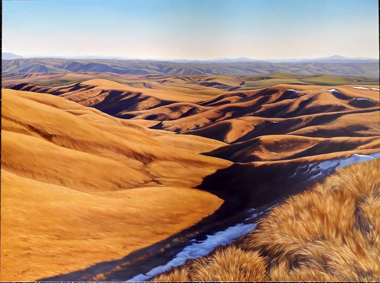 Teviot Valley Landscape