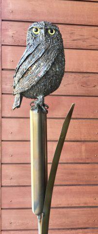 Owl on Raupo wand