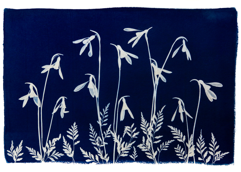 Wild Flower Meadow  Spring II