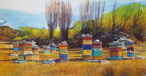 Beehives - Matukituki print