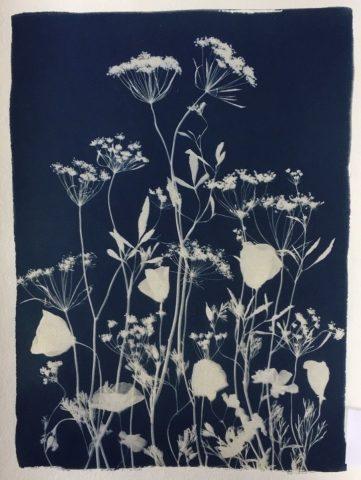 Wildflower Meadow for Fiona