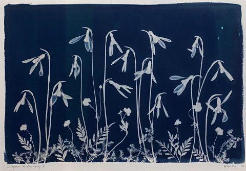 Wildflower Meadow, Summer VI