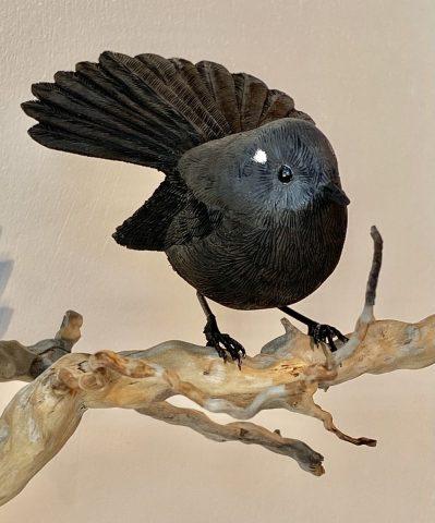 Black Piwakawaka on branch (Tree root) - native to South Isand