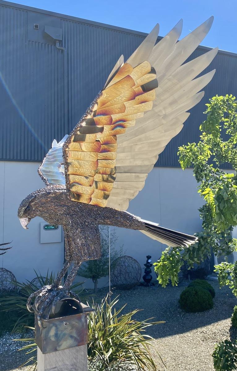 Falcon on timber pole