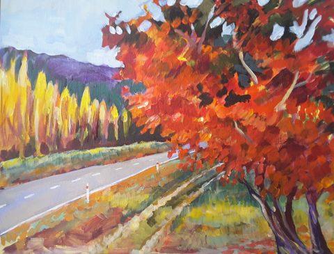 Oak Tree on Earnscleugh Road