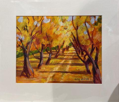 Autumn Apricot Trees